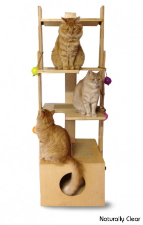 62-Inch Cat Tower for Sale